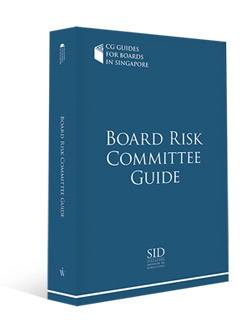 Board Risk Committee Guide